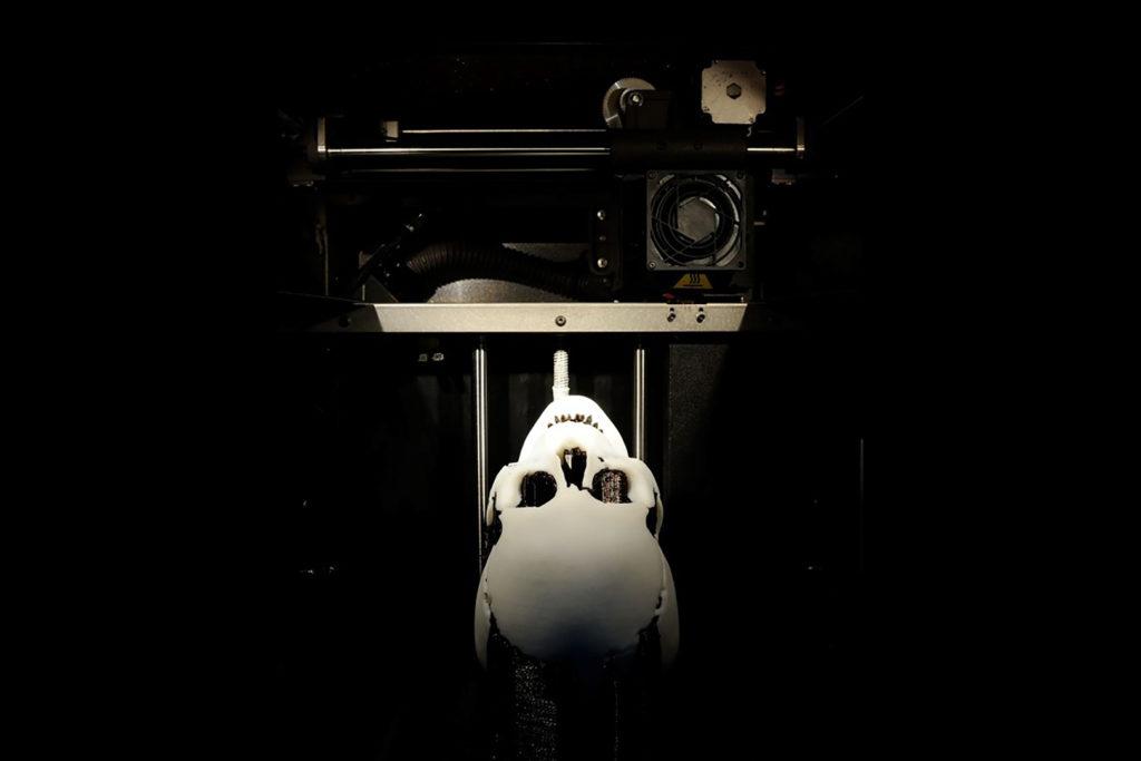 3D tlač lebky upíra ČVUT