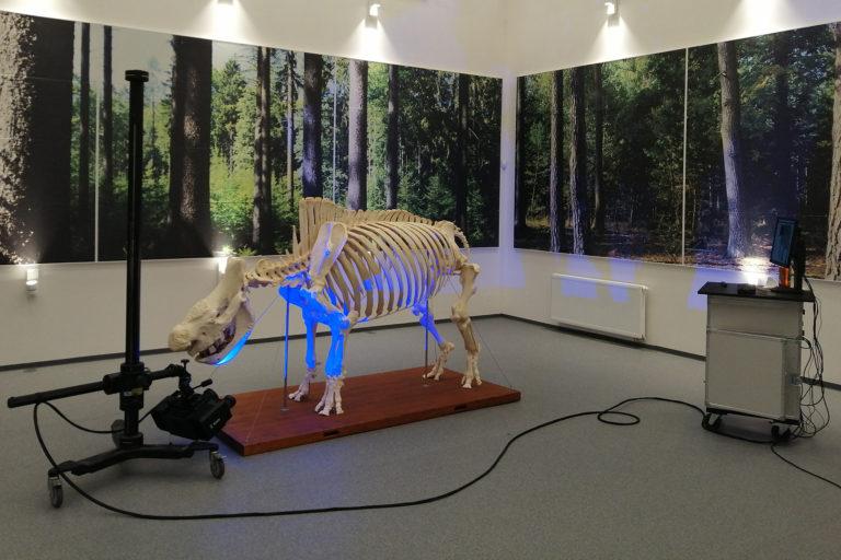 3D skenování kostry