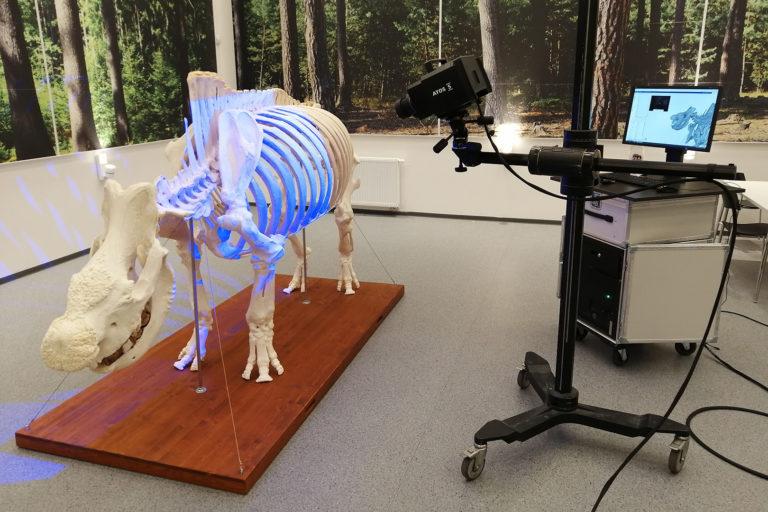 3D skenovanie kostry nosorožca