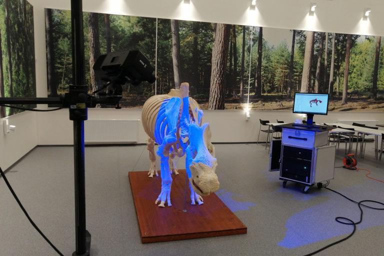 3D skenovanie nosorožca